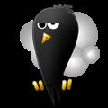 Twerpscan crow